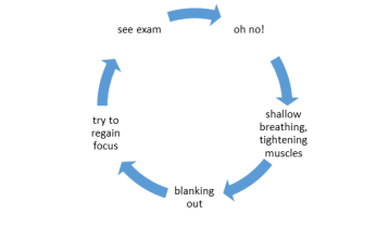 Exam Anxiety Cycle