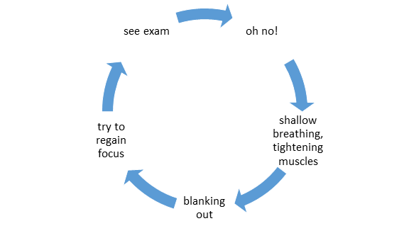 Exam Anxiety Cycle
